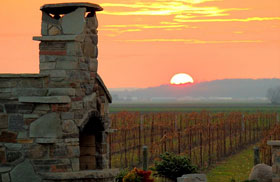 Holland Marsh Winery Bradford
