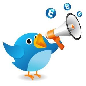 twitter-success